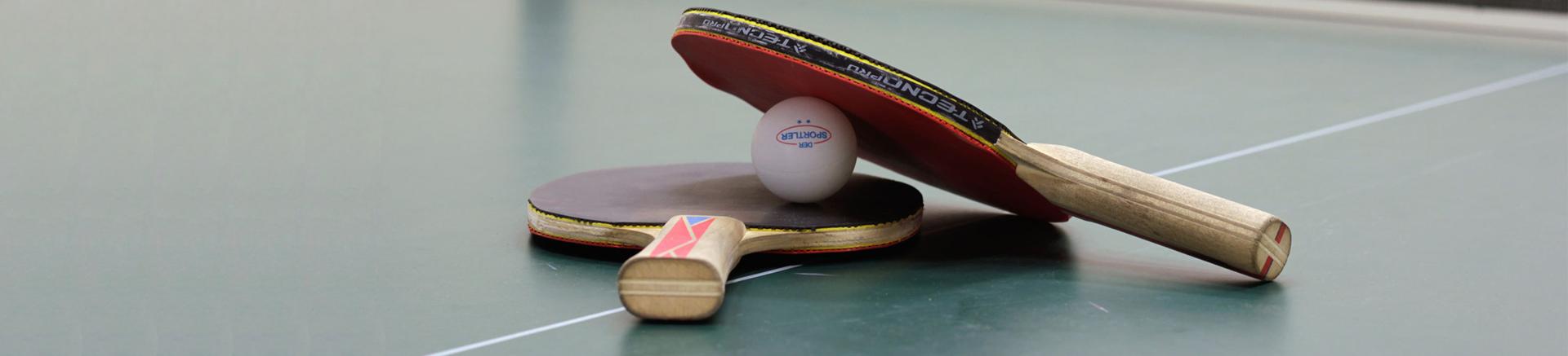 Sektion Tischtennis